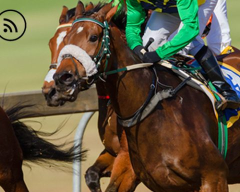 Image The Horse Race podcast for Lima Charlie News