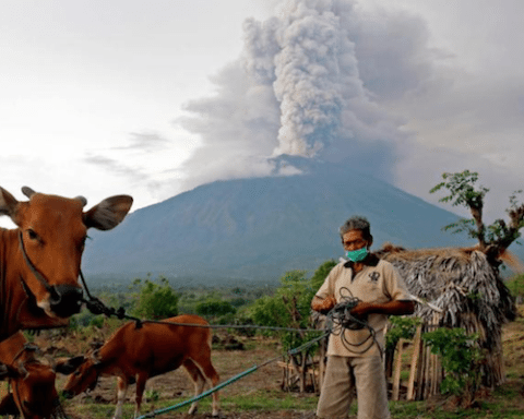 Image Bali partially evacuating due to volcanic activity