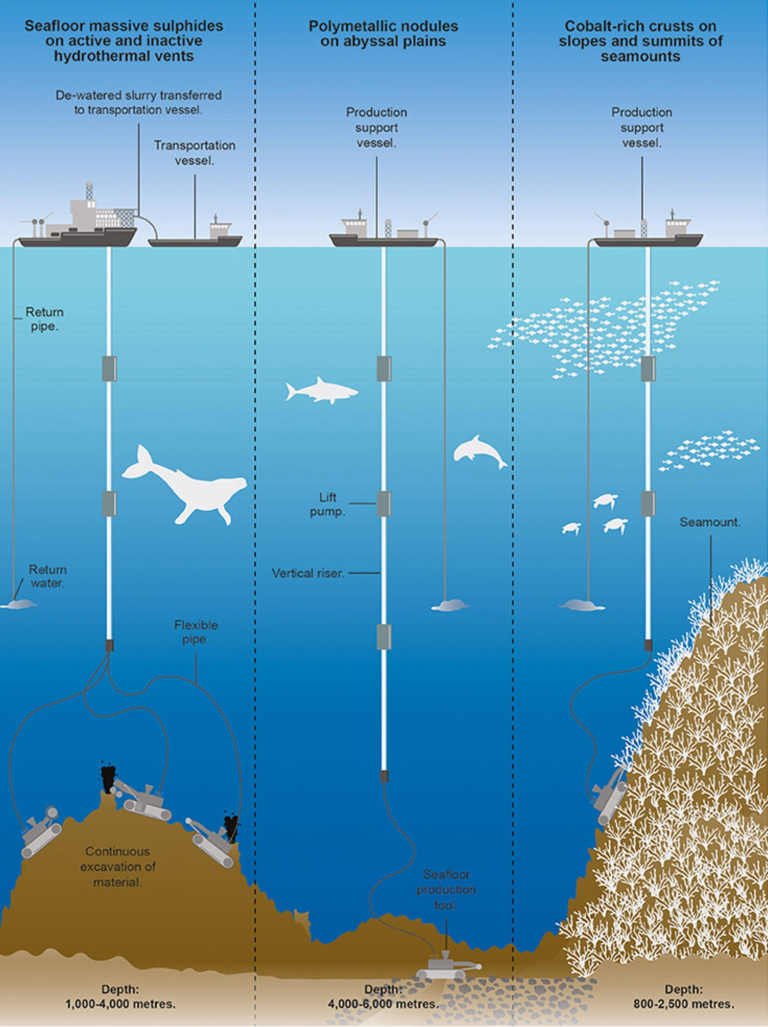 Image A schematic showing the processes involved in deep-sea mining for the three main types of mineral deposit [Image: Design Studio, University of Exeter]