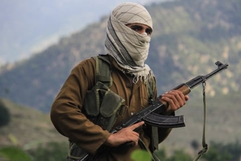 Image Taliban spring offensive begins, as insurgents attack across Afghanistan [Lima Charlie News][Image: Al Jazeera]