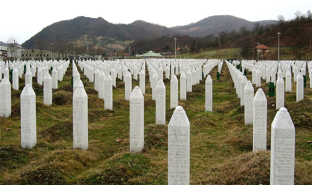 Image [Gravestones at the Potočari genocide memorial near Srebrenica (Michael Büker)]