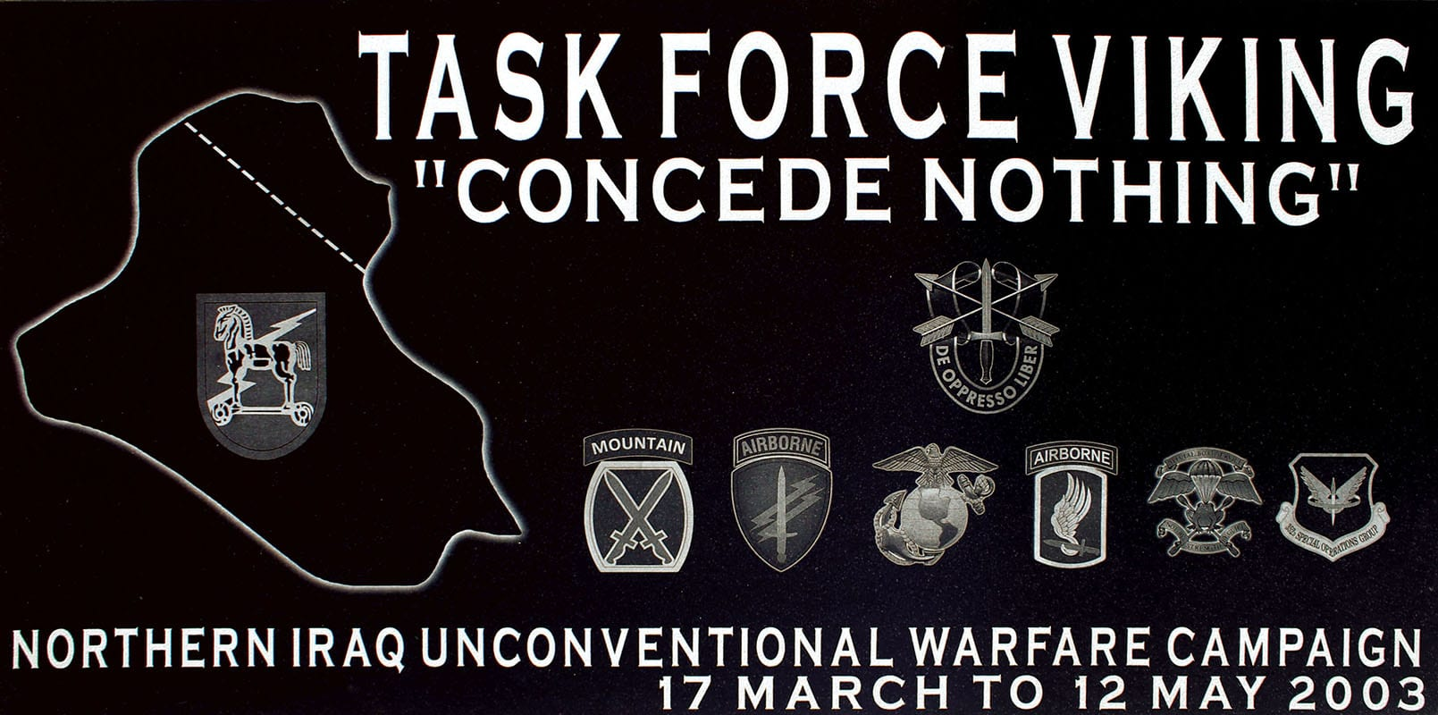 Task Force Viking